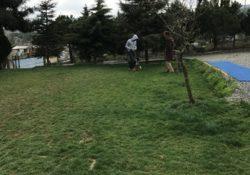 İstanbul Esenler Köpek Pansiyonu